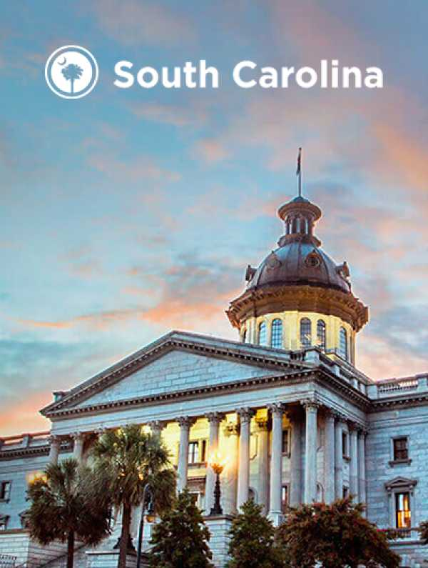 REQ South Carolina Content Strategy & Campaign Development Case Study